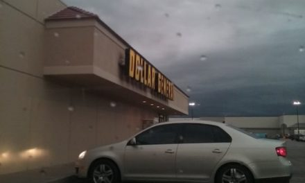 """Dollar General inspection in Wichita goes bad; Rodents chewed Ghirardelli candy and Lay's chips corner, """"large amount rodent droppings and chewed up sunflower seeds also on top of coolers"""""""